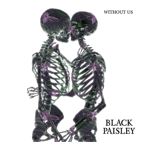 Black Paisley - Without Us